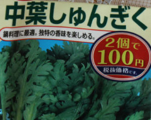 中葉春菊の種袋
